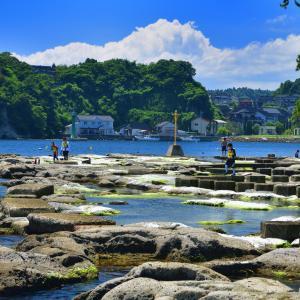 日本百景にも選ばれた「九十九(つぐも)湾」は、美しいリアス式海岸の遊歩道やイカした道の駅に遊覧船と今注目を浴びる観光名所でした(*'▽')♪