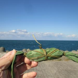 磯貝の海鮮丼(コスパ最強)