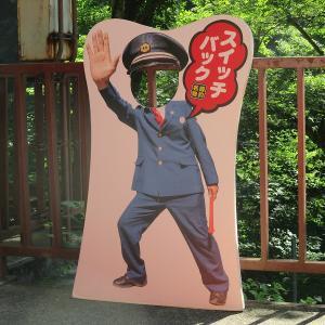 黒部峡谷鉄道 柳橋~鐘釣