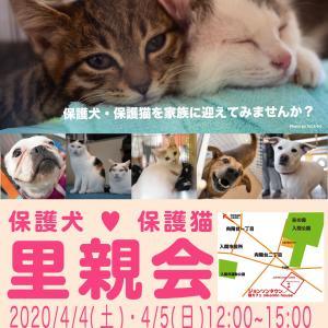 3/25① [3/15(日)] ★4月4日(土)、5日(日)保護犬保護猫譲渡会のお知らせ。
