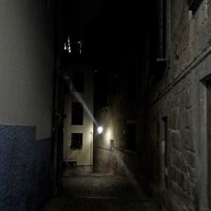 ハロウィーン特別ツアー行ってきました。Granada Misteriosa