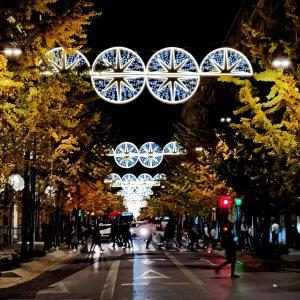クリスマスイルミネーション luces de Navidad