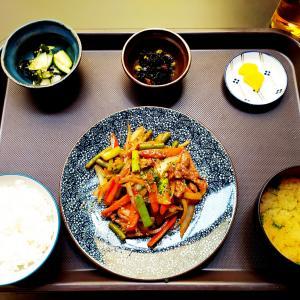 今日の気分は和食 味噌炒め定食