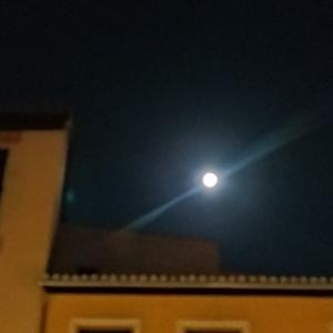 満月の日 きゃあ!「愛してる」って、生徒から