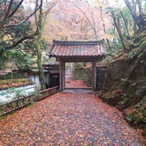 ★京都の紅葉-世界遺産の栂尾山高山寺★