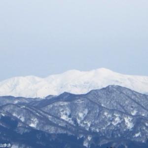 文殊山(365m) 266回目 二上コース