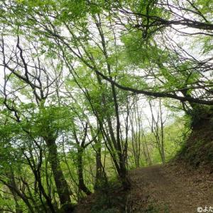 文殊山(365m) 270回目 角原コース