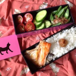 鮭かま弁当