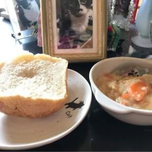 パンとクリームシチュー
