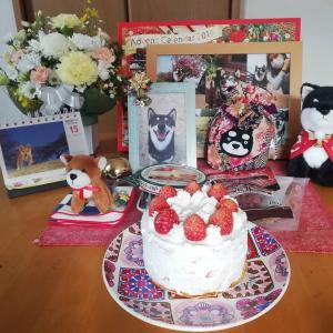 くるちゃんのお誕生記念日