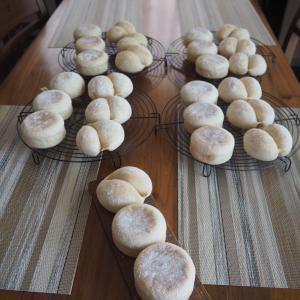 基本のレッスン第3章レーズン酵母でパンを焼く前半