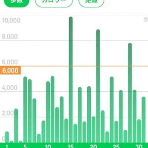 今月の歩数