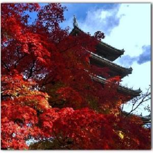 京都の深まる秋~