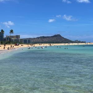 週末のハワイのカピオラニパークの賑わい