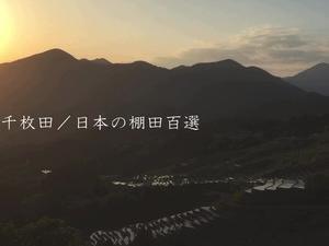 丸山千枚田/日本の棚田百選の動画