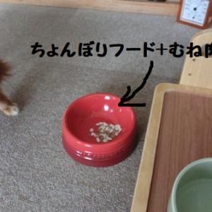 ユメコさんの食事★2