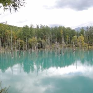 青い池プリン