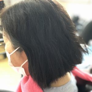 縮毛矯正ファイル89(定期的な白髪染めでのダメージ毛)
