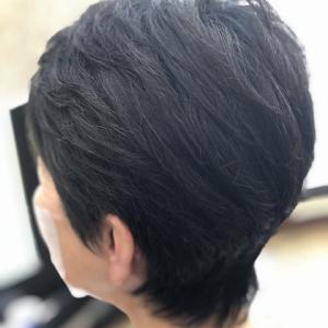 天然100%ヘナで白髪染め(ハーブブルネット編)