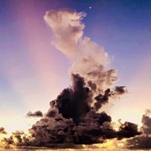 自然の美しさ(石垣島)