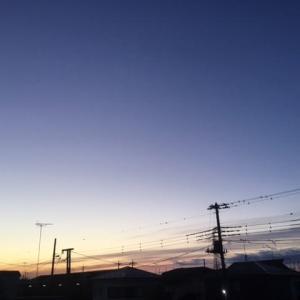 本日吉田家定休日です。