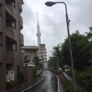 雨に煙るスカイツリーも幻想的♪