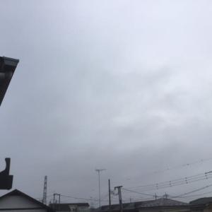 梅雨の様ですね^^;