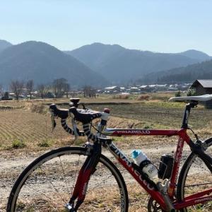 今日は やっぱりロードバイク 「ピナレロ号」 ~春陽気の大原 昼飯は鯖鮨~