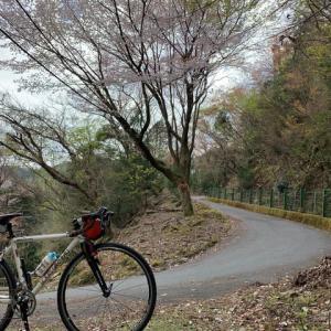 今日はやっぱり 「峠日和」 ~京都の峠 アーカイブ~