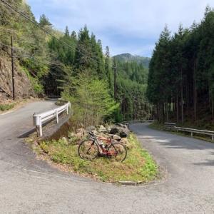 今日は やっぱりロードバイク 「ピナレロ号」 ~京都 北山のW峠越え~