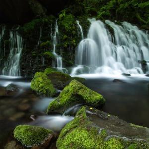 雨の季節の元滝