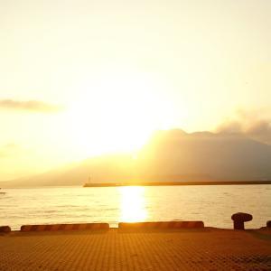 感染者0の日が続き落ち着きを戻しつつある鹿児島