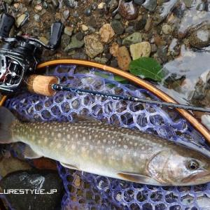 渓流ベイト釣行 アルファスAIR TWの初実釣で尺イワナ