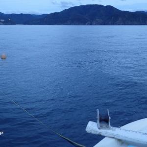 白イカ釣行 パラシュートアンカーでの流し釣り