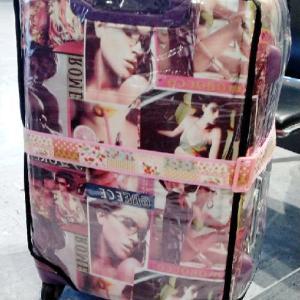 *:°   川*>ω<) ω<*川  °:* 昨日 の 女子会 が 楽しかったのと 、スーツケース・カバー の お話 を  今さら~~★  (^┰^川ゞ