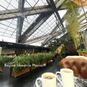 美術館のカフェ @北京芳草地