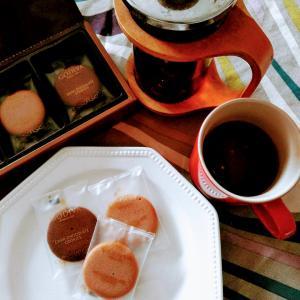 [GODIVA ミルクチョコレートとダーク] さくさく食感が美味しいクッキー