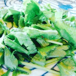 [三つ葉の新しい食べ方発見♡]三つ葉オンリーサラダは美肌効果抜群