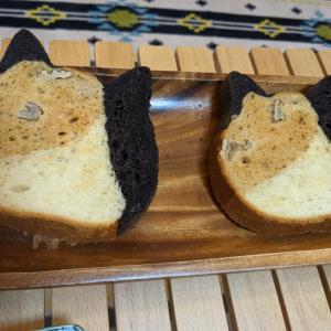 [東京ねこねこ♡]三毛猫パンがかわゆすぎる