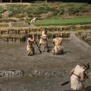 古代人の生活を見てきました。
