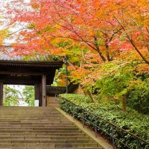 第115回 鎌倉漱石の會 漱石忌例会 12月8日(日) 開催