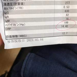 診察日。肺炎でした。
