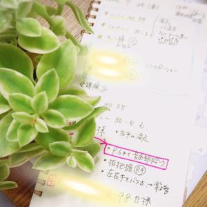 【7月2回目レッスン②】学びの古典とモーツアルト、音楽的な構成《動画アリ》