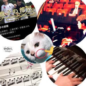 ピアノ、ネコ、コンクール❗️−動画アリ。−