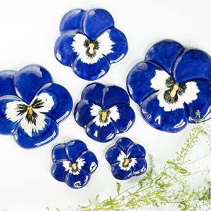 春植物の小部屋 Vol.3 - Spring Ephemeral
