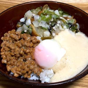 ☆3種ネバネバ丼