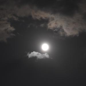 十五夜のお月様
