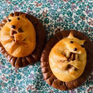 はじめましての生徒さん達とパン作り!作ったパンはハリネズミパン!