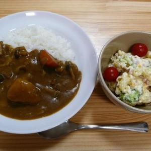 【日カラチーママとふぅーふぅーしながら食べる】暑い日の昼食は熱々のカレーに限る