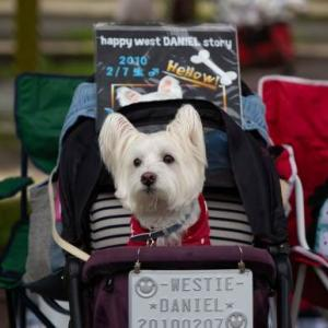 ♪ ダニエル WP2019 素敵な写真をありがとうございます~<(_ _)>  ♪